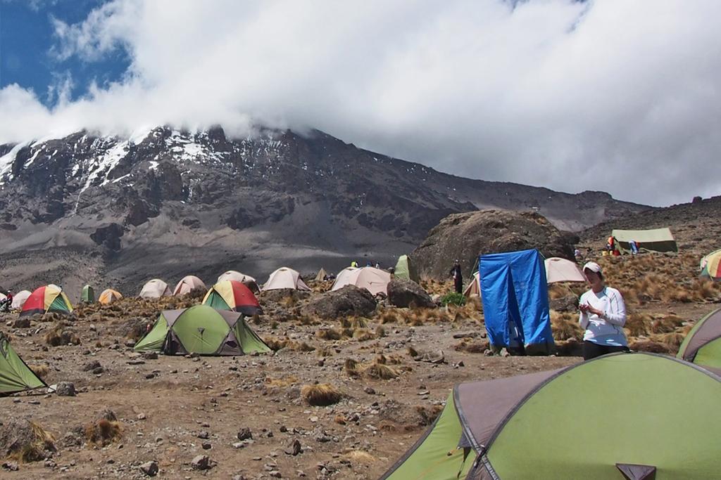 Summit the world's highest freestanding mountain...